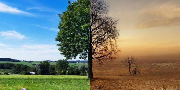 Zmiany klimatu w Polsce – jaka jest perspektywa?
